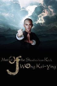 Master of Shadowless Kick: Wong Kei-Ying